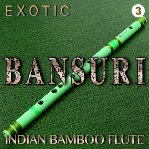 Zion Music Exotic Bansuri Vol 3 WAV